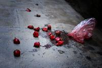 Dead Strawberries