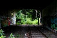 Tracks and Graff