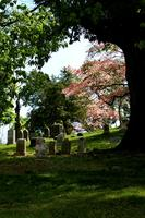 Green–Wood Cemetery